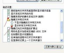 分享两种可以显示U盘隐藏文件的操作方法